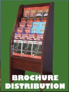 City Vision Brochure Distribution