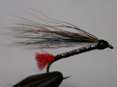 Black nose dace bucktail fly is an imitator of fish