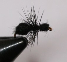 The black ant dry fly is a simple pattern to tie and works well for trout as well as panfish