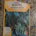 Bush_Beans