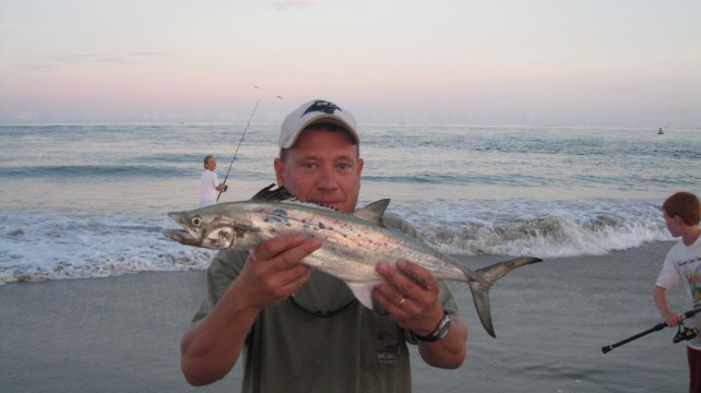 jack with spanish mackerel
