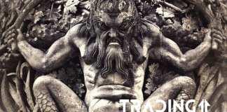 trading11 analyza statue nalada