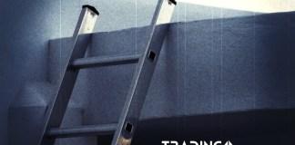 zebrik UP trading11 analyza