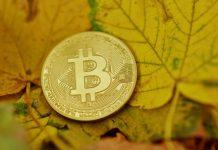 Bitcoin BTC listí