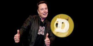 Elon Musk konečně vyjádřil podporu Dogecoinu! Jaká byla reakce?