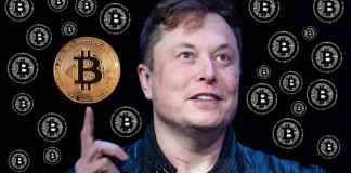 Elon Musk prozradil, kdy Tesla obnoví platby v BTC - Důvod? Bitcoin je ekologičtější!