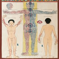 Tibetan Medicine Painting