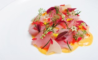 Ceviche-of-cured-kingfish-with-a-creamy-puree-of-freshly-made-xo-sauce-and-chilli-jam.-Drizzled-with-rendered-shell-fish-oil-resize