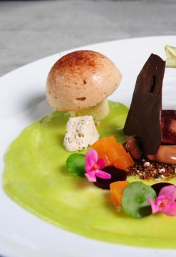 Shitake-mushroom-white-chocolate-parfait-chocolate-truffles-with-mocha-soil-wild-almond-nougat-and-pistachio