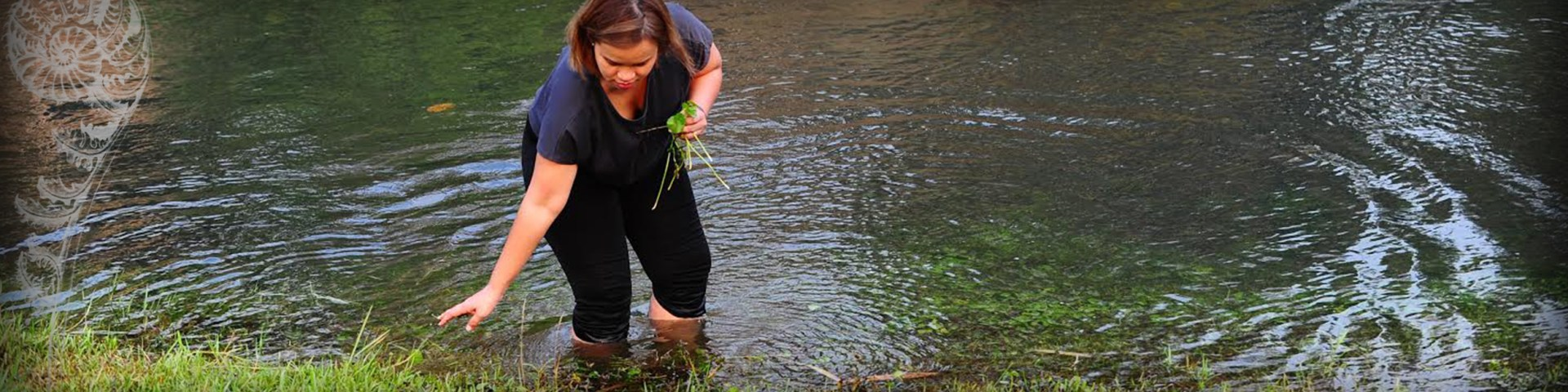 Header - Ingredients - Rivers - Foraging- Chef Bee Satongun - Traditional Thai Food