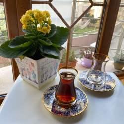12 Pcs Glazze Mirage Blue Crystal Luxury Tea Set