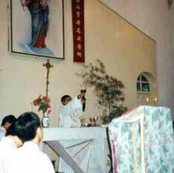 cardenal zen primero novus ordo china