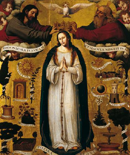 immaculata7