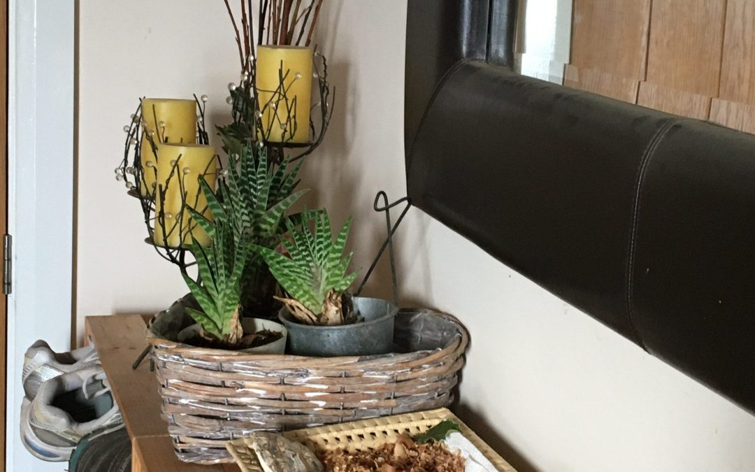 Wellbeing Wednesday, Bring the Outdoors In