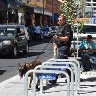 Policía Guadalajara
