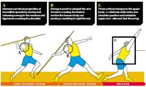 Throwing – The Key to Human Success | Tragicoedia