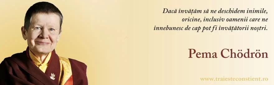 Citaten Rumi : Citat pema chodron dacă învățăm să ne deschidem inimile