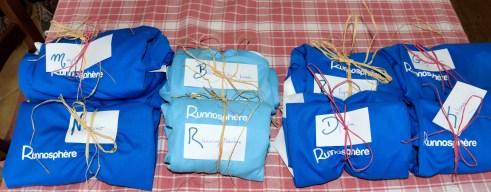T-shirt Runnosphere Salomon