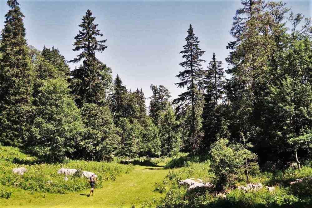 Trail en Vercors: Jour 2 en LSD