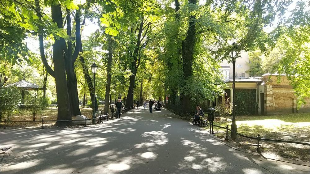 Le parcours emprunte la ceinture boisée de la vieille ville