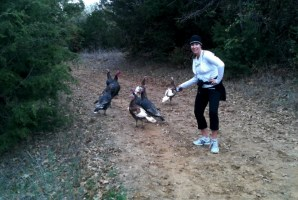 Running with real Turkeys