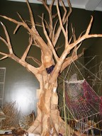 tree-resize_0460