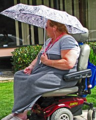 lady wheelchair umbrella