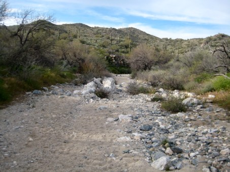 Upper Ford Canyon Trail