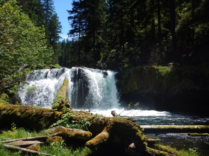 """Hiking the """"Dread and Terror"""" section of the North Umpqua Trail. Fantastic!!"""