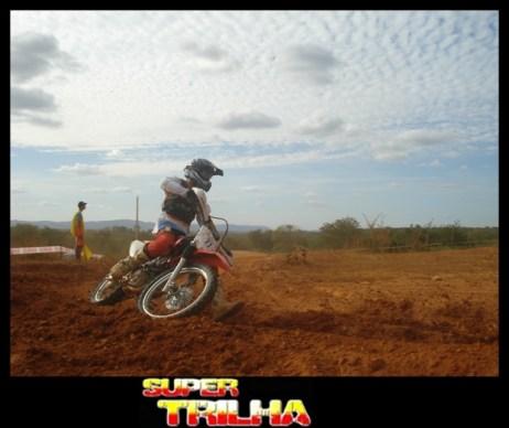 Veloterra - 156- Bicho do Mato