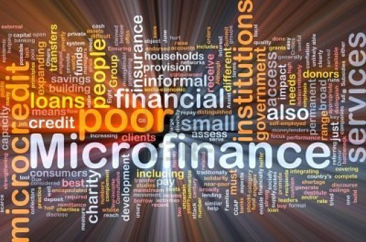 Microfinance-business-in-Zimbabwe