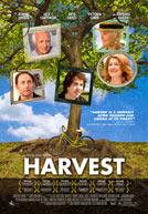 Harvest Poster