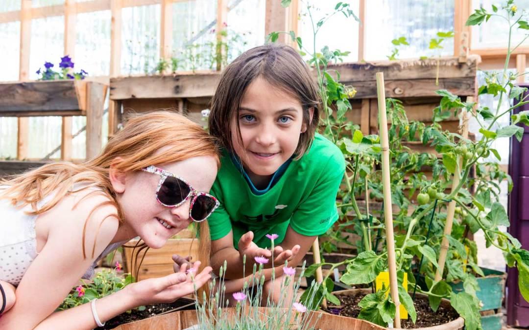 10+ Eco-Friendly Ways to Celebrate Earth Day