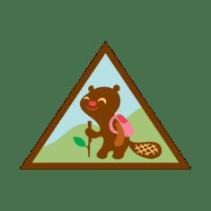 Brownie Outdoor Badge