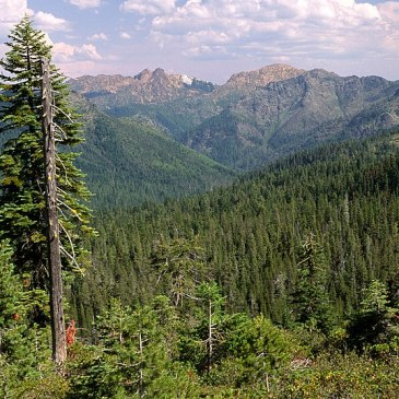 Best Hikes in Rogue River-Siskiyou National Forest (OR)