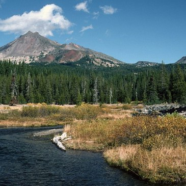 Best Hikes in Deschutes National Forest (OR)