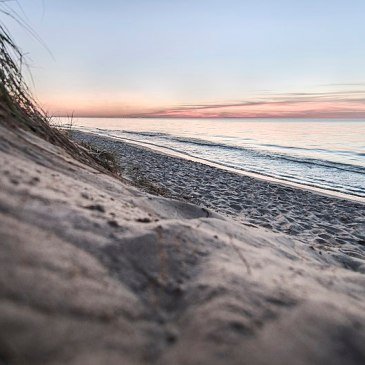 5 Best Day Hikes in Indiana Dunes National Park