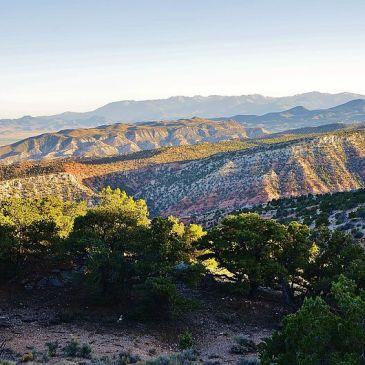 Best Hikes in Fishlake National Forest (UT)