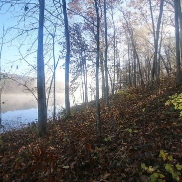 Best Hikes in Mark Twain National Forest (MO)