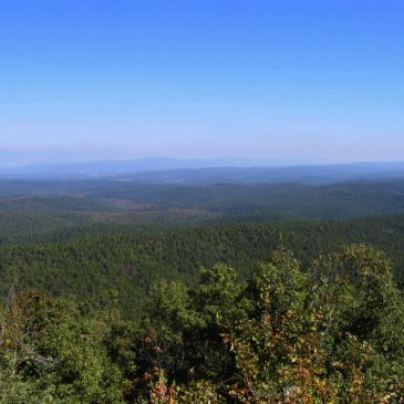 Best Hikes in Ouachita National Forest (AR)