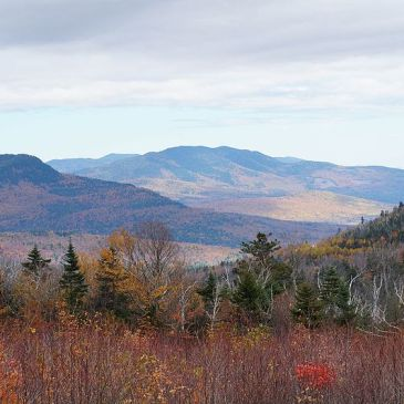 Best Hikes in White Mountain National Forest (NH)