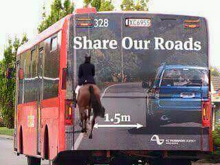 Crowwood Equestrian says let's see how many shares we c...