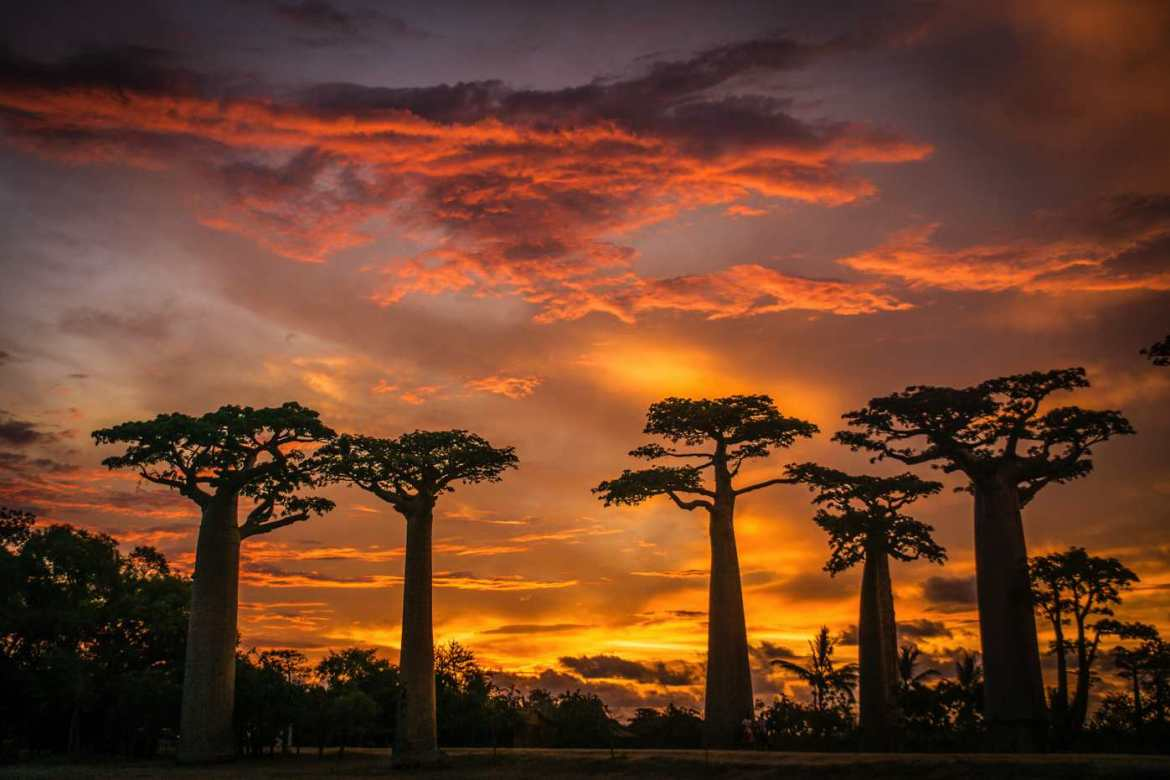 Sunset in Madagascar
