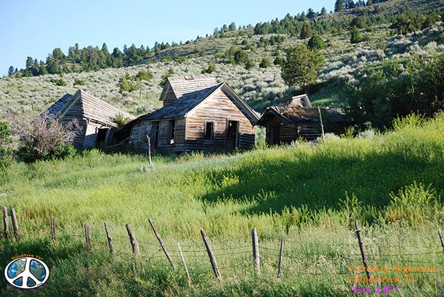 Montana-Backroads-Spring-Birdwatching-Trail of Highways-RoadTrek TV-Social SEO-Organic-Content Marketing-Tom Ski-Skibowski-Photography-Travel-Media-21