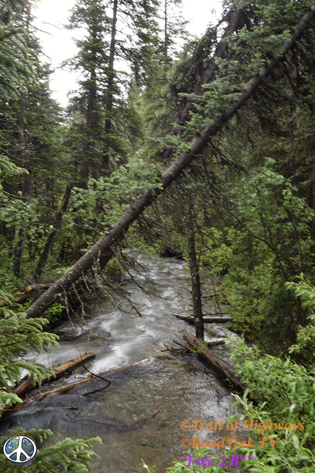 Ptarmigan Lake Trail-Colorado-Hiking-Trail of Highways-RoadTrek TV-Social SEO-Organic-Content Marketing-Tom Ski-Skibowski-Photography-Travel-16