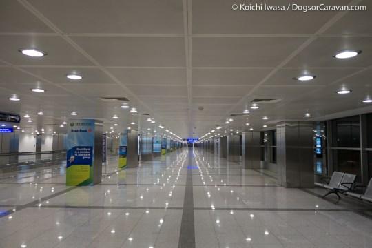IznikUltra Istanbul Airport morning