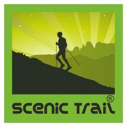 Scenic_Trail_Logo
