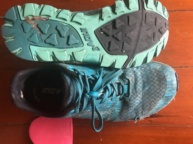 Inov8 Trail Talon 235 with an extra 4mm heel insert to help with an achillies injury.