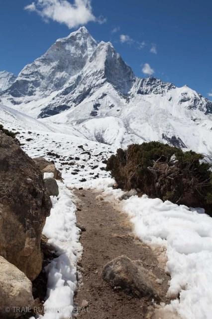 The pleasurable trail down to Dingboche.