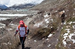 everest marathon 2014-322